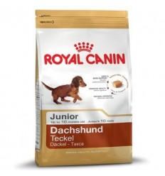 Royal Canin Dachshund Junior 2.5 kg.