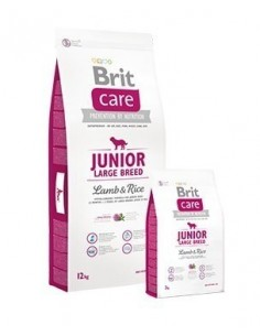 Brit Care Junior Large Cordero 12 kg.