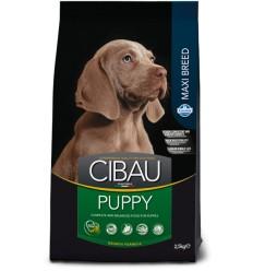 Cibau Maxi Puppy 15 kg.