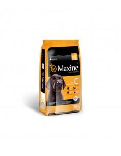 Maxine Cachorro 21 kg.
